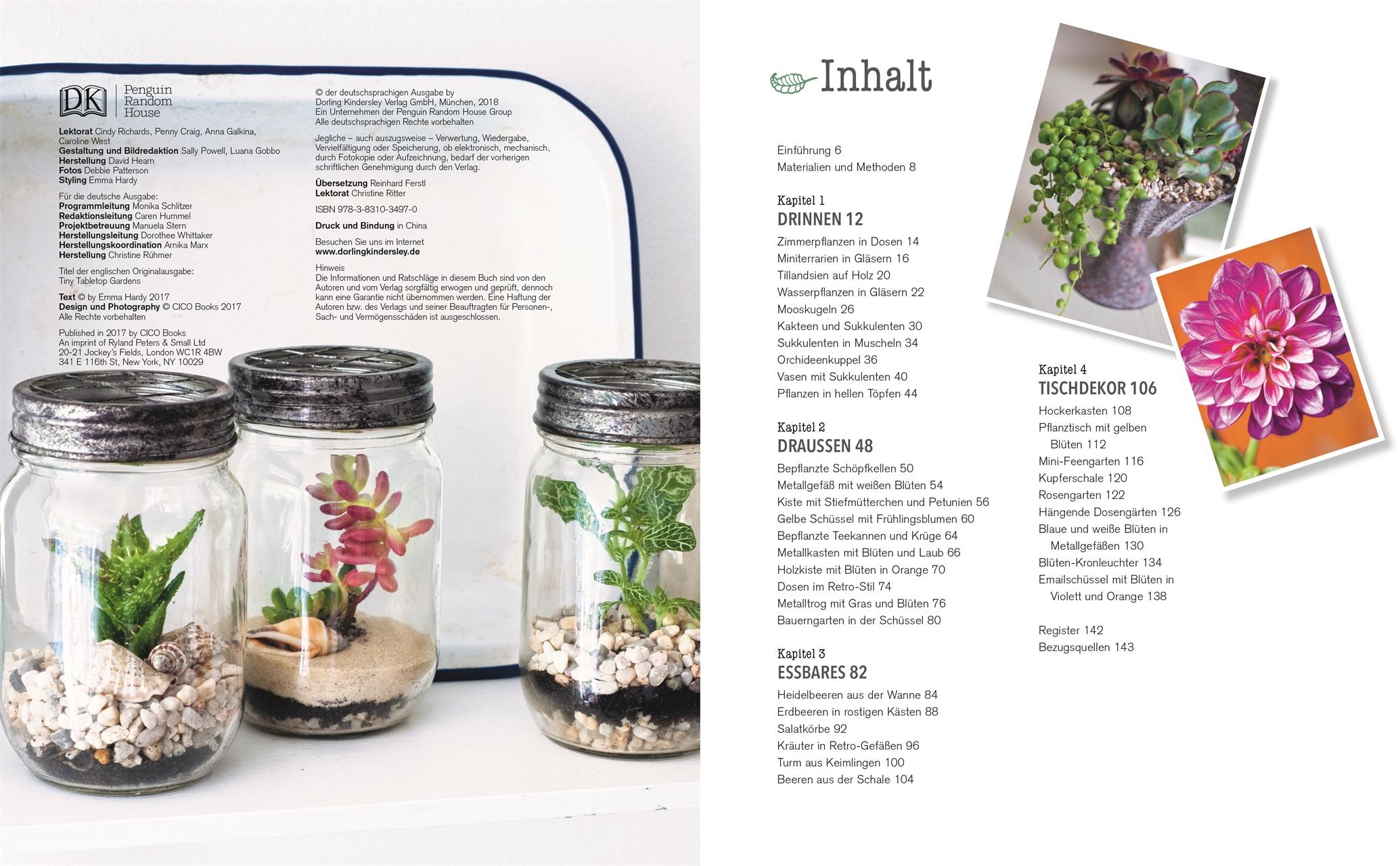 Kreativ Mit Pflanzen Deko Buch Ideen Fur Drinnen Draussen