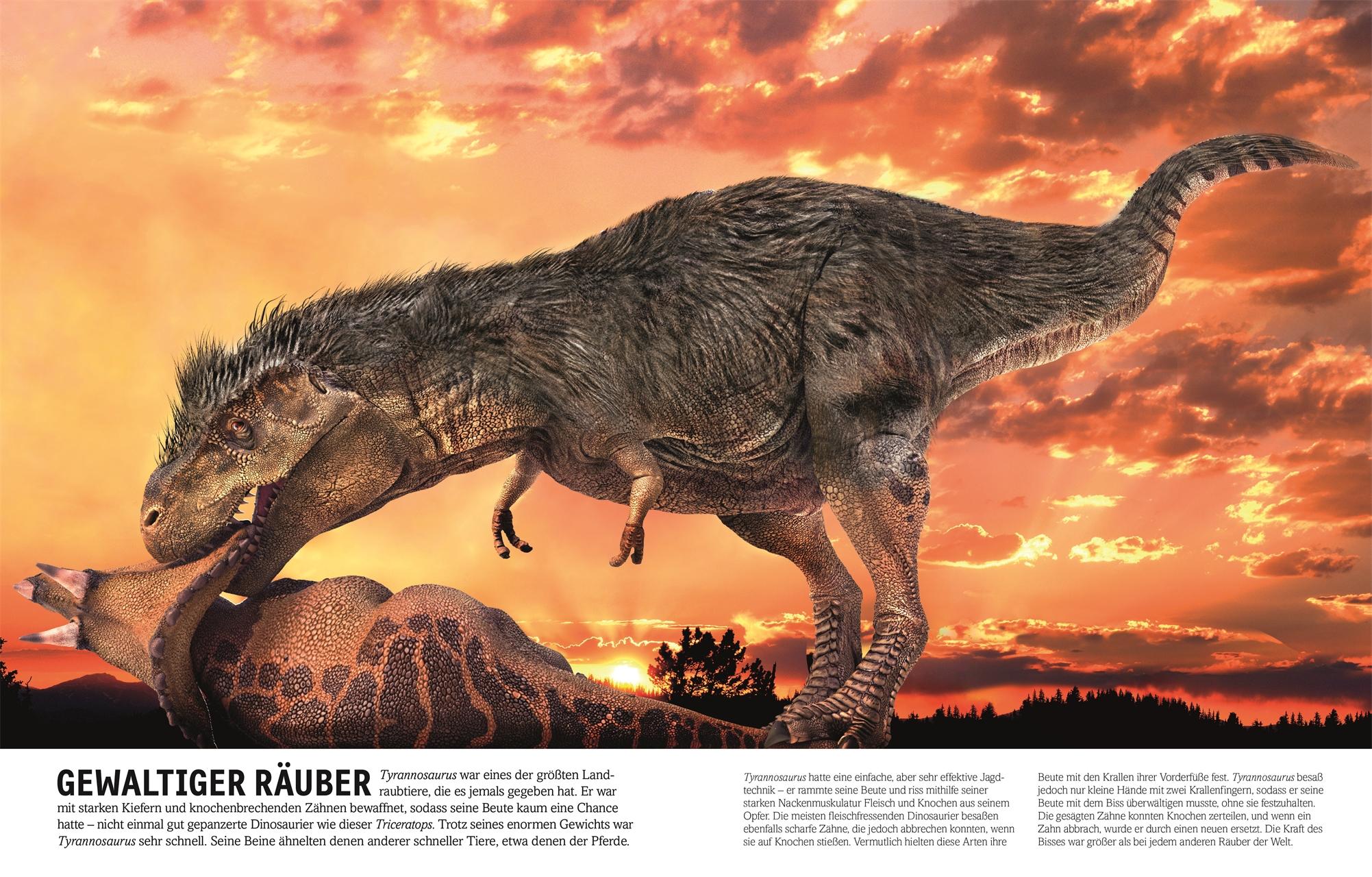Zu Zeiten Der Dinosaurier